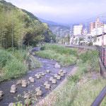 こちらは千歳川です。 静岡県熱海市との境で、上って行くと湯河原温泉街です。