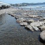 新崎川が流れ込んでいます。清流で、6月上旬には上流で蛍が   舞います。  最近、川を渡れるように大きな石が並べられました。
