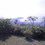 城山山頂から見た真鶴半島。ホトトギスの声を初めて聞きました『♫ てっぺんかけたか…け〜っ ♫』