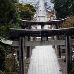 宮地嶽神社の参道です。「光の道」は、嵐のJALのCMで全国的に有名に。彼らが食べてた松ヶ枝餅(あんこが入った焼き餅)もきっちり味わいました。