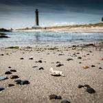 Grenen Beach (bei Skagen, Dänemark)