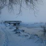 Winterpolder bei Alt-Galow im Nebel (Foto:O.Rochlitz)