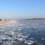 Eine kurze Frostperiode Mitte Januar ließ die berühmten runden Odereisschollen entstehen