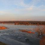 Und hier ein Blick über das Untere Odertal aus 11 Metern Höhe vom kürzlich eingeweihten Beobachtungsturm ca. 3 km südöstlich von Stützkow