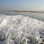 Seltsame Eisgebilde am Uferrand (Foto:O.Rochlitz)