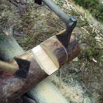 Durant ce stage, vous apprendrez à utiliser les outils anciens pour façonner vos fûts et assembler votre isba. (PHOTO 2011 (c) John C)