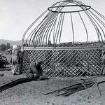 """La yourte bashkir est plus haute que la yourte mongole. On dit qu'elle est de type """"kyrghize"""". Une yourte de 5 murs (environ 25m²) se monte en seulement 1H30 à 4 personnes !"""