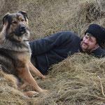 Voilà un autre membre de la famille : Mansur notre chien, un croisé berger allemand et chien loup tchèque. (PHOTO 2017 (c) Gauthier Rousseau)