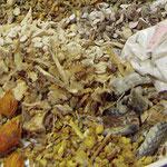 La pharmacopée utilise des substances animales, végétales et  minérales. En France, le conditionnement est aseptisé.