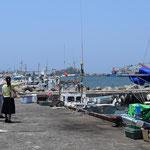 連れてきて頂いたのは、賀露港という鳥取の漁港です。どうやら、日本海の美味しいさなかを鳥取で食べるならここに来れば間違いなし、という港でした。