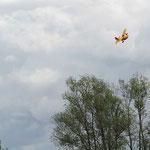 das kleine selfmade Modell aus Depron fliegt einfach klasse