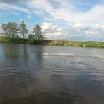 Alexander`s Rundnasen-Hydroplane, mit 6S fliegt sie übers Wasser