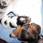 06.02.2015 - 12 Tage alt - Mama Mayla + Aileen