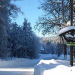 Winterlandschaft am Buchhaus VIER