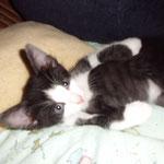 Wendy 09/2012