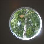 パッシブハウス個人宅|玄関窓