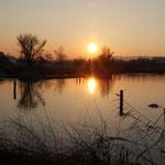 Sonnenuntergang am Pfäffikersee