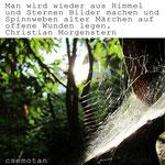 Foto von Spinnennetz und Zitat: Man wird wieder aus Himmel und Sternen Bilder machen und Spinnweben alter Märchen auf offene Wunden legen. Christian Morgenstern