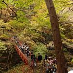鹿飛橋は人気の撮影スポットです。