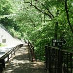 道の駅あがつま峡から徒歩30分ほどで鹿飛橋入口につきます。山歩きでない方はこのまままっすぐ進むと吾妻峡十勝の「龍ノ剣磨岩」が左手に、「小蓬莱」と「大蓬莱」が右手に見えてきます。
