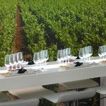 Andalusischer Wein - ein Erlebnis für Gourmets