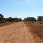Rote Piste Sierra de Huelva