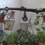 Brunnen Blanco y Verde, Conil de la Frontera