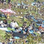 葡萄畑の観客達はのんびりほろ酔い、幸せだな~