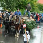 Holztransport mit Pferd, Peter Abegg, Rothenthurm