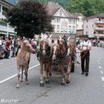 Traditioneller Alpaufzug