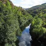 rio de la finca