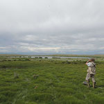 Kosh Agach steppe