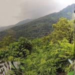 Fuyuan butterfly resort
