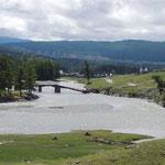 Chya rivier