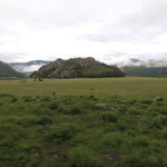 de steppe bij Kuray