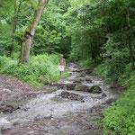 Pilis gebergte rivier bij Dömös
