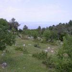 Evia, Pilio