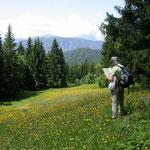 Planina Pod Golica bij Jesenice
