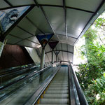 Mit der Rolltreppe zum Lookout!