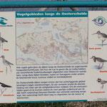 Vogelvielfalt