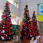 町田ミュージックパークのクリスマスツリー101128