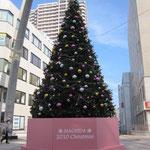 町田ミュージックパークの特大クリスマスツリー101128