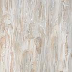Métamorphoses - blanc, 2010, toile sur châssis, 54x73 cm