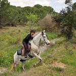 Der Pferderücken soll beim Klettern entlastet sein. Foto: www.panorama-trails.com