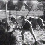 Heumadt 1948