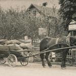 Schatz 1920