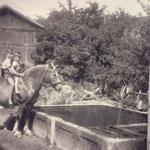 Schweigl Walter 1945