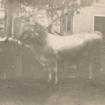 Bäuerin um 1920