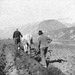 Köll Martin und Kuen Anton 1935