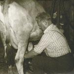 Melkvorgang